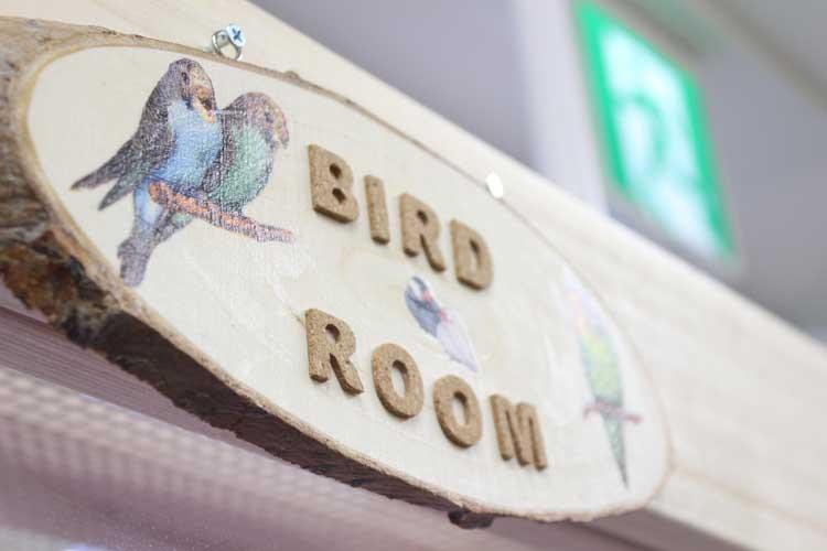 小鳥&小動物ショップ そら 店内
