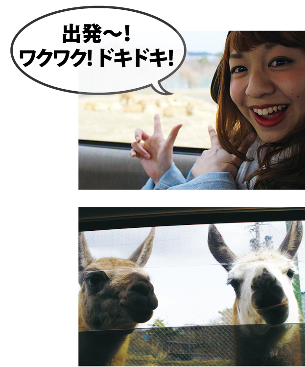 Let's ride on a trike / Best Places to Visit for your vacation / Tohoku Safari-park and Ebisu Racing Circuit.